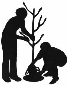 DUO planting figures