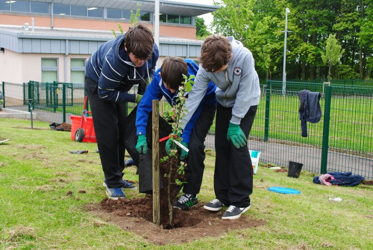 Dundee Urban Orchard Ballumbie Primary School