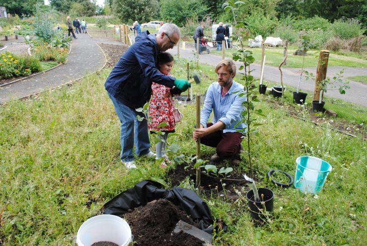 Dundee Urban Orchard Ninewells Community Garden