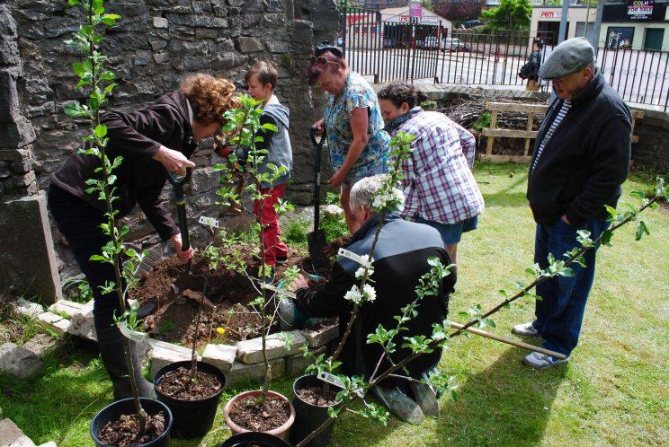 Dundee Urban Orchard Lochee Community Garden