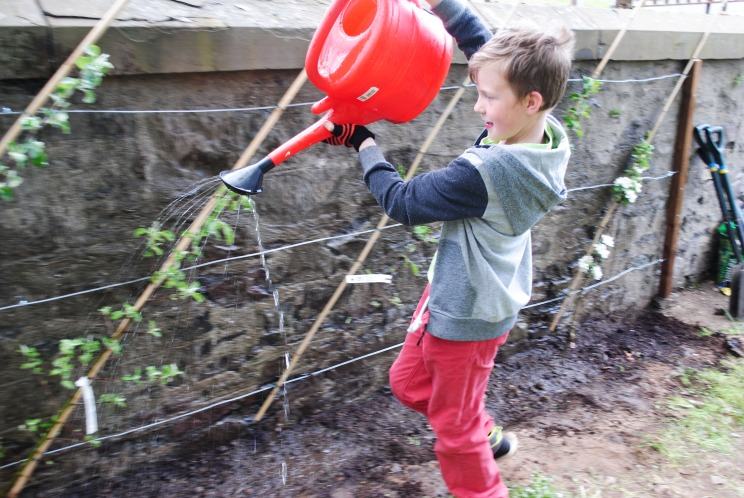 Dundee Urban Orchard Lochee Community Garden - watering the Orchard City vision
