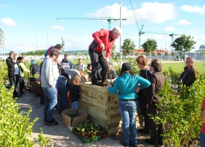 P.N. Dundee Urban Orchard, Orchard Planting in Slessor Gardens, 2016